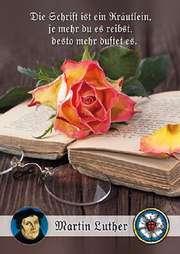 Postkarten: Die Schrift ist ein Kräutlein, 4 Stück